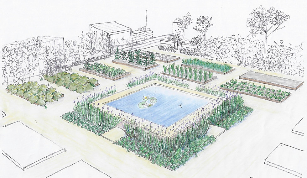 Kitchen Garden - Handdrawn Visual - September 2019_edited.jpg