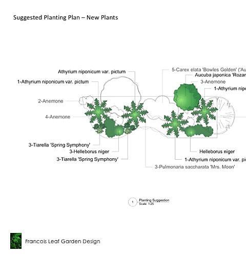 Larchwood - Planting Plan - .jpg
