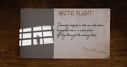 Arctic Flight-Still Frame-000348.jpg