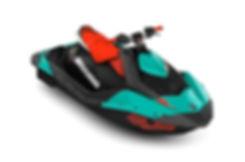 Sea dooSPARK 900 TRIXX.jpg