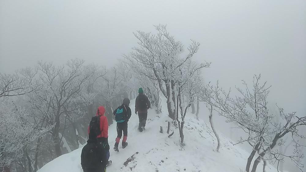 高見山の登山