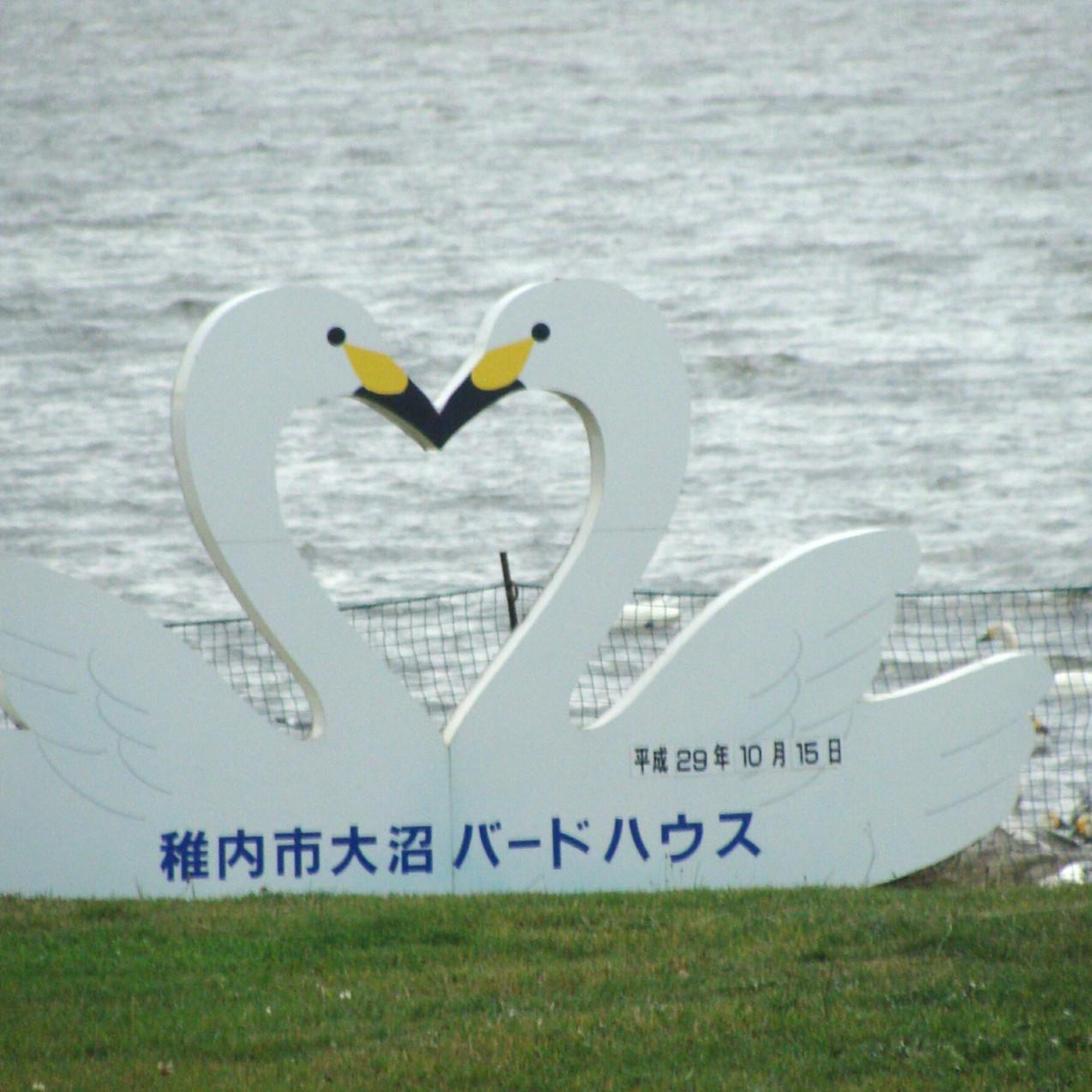 Onuma bird house