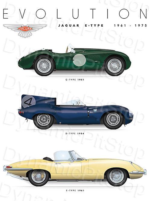 30x40cm Jaguar E Type Decal or Tin Sign