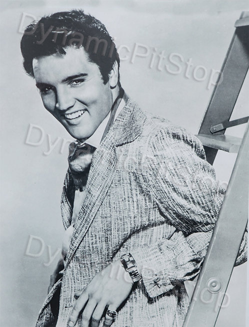 30x40cm Elvis Decal or Tin Sign