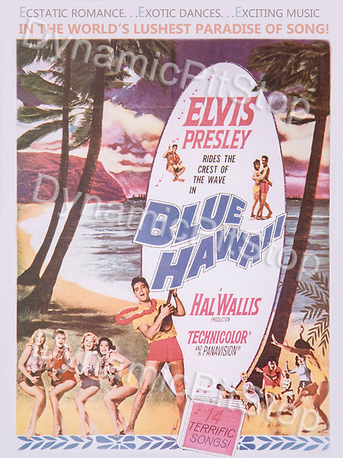 30x40cm Elvis Hawaii Decal or Tin Sign