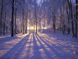 "Keep Reading: Part II of ""Lighting a Dark December."""