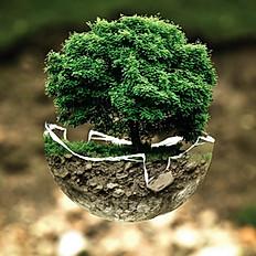 Compromiso con el medio ambiente