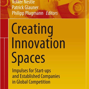 Creating Innovation Spaces - Impulses for Start-ups and Established Companies in Global Competition