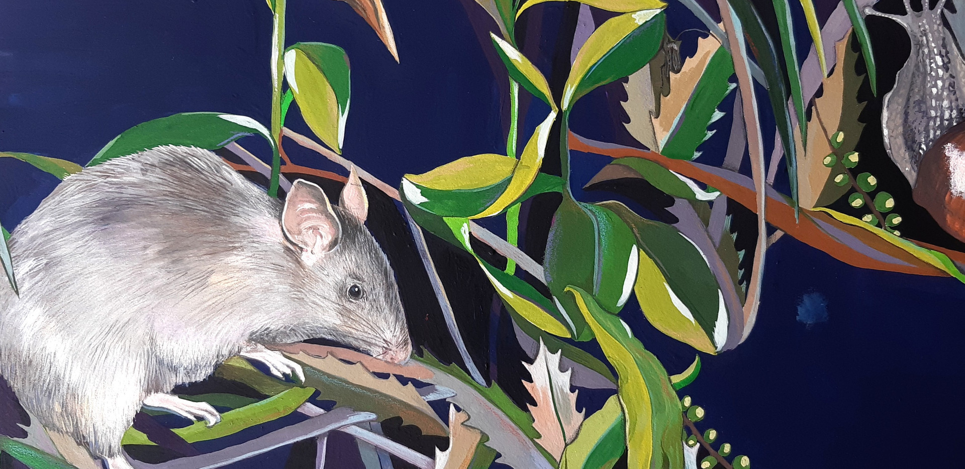Rat and leaves from Watch Out Snail