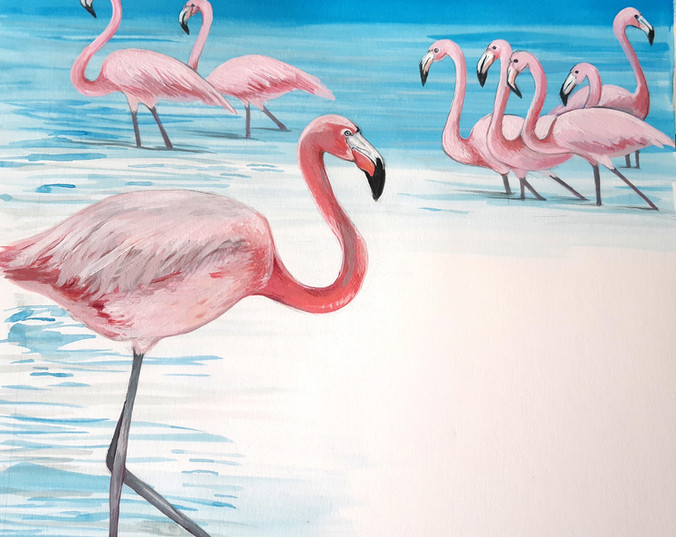 Flamingoes illustration