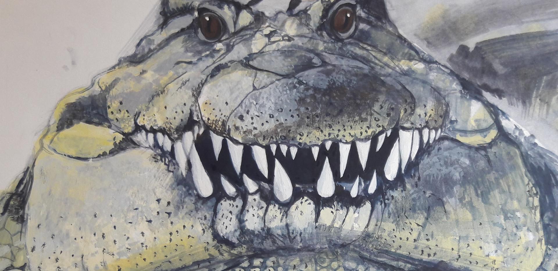 Crocodile and friendly bird