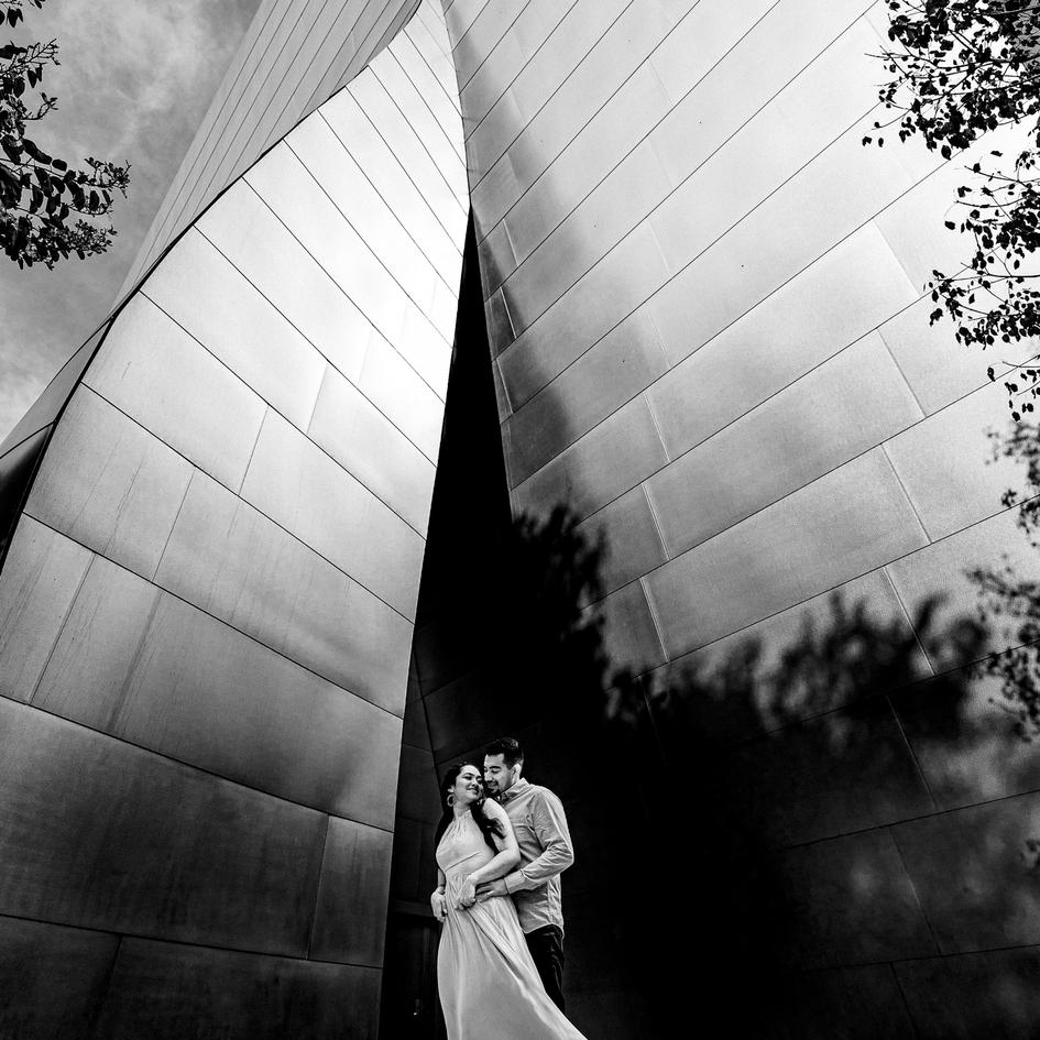 Walt Disney Concert Hall Engagement