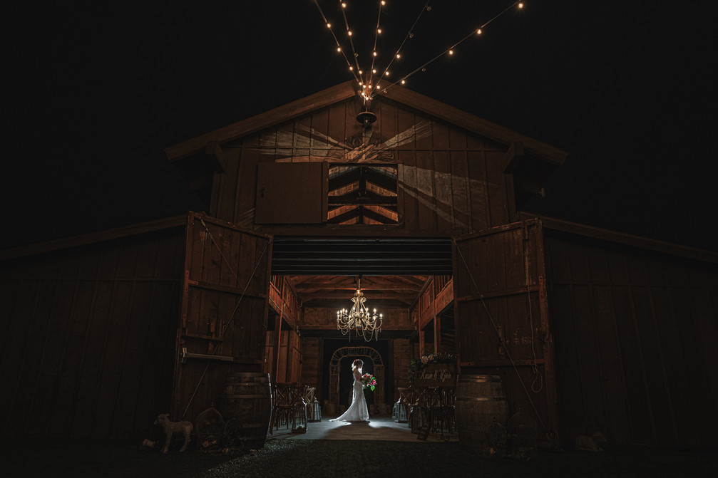 Beautiful Bridal Portrait at the Ethereal Gardens wedding venue.