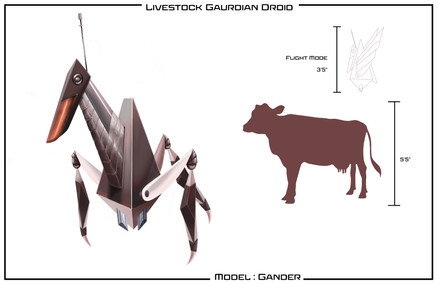 Gander Concept Drawing