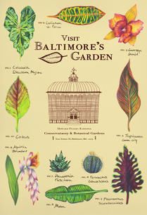 Baltimore Conservatory Poster