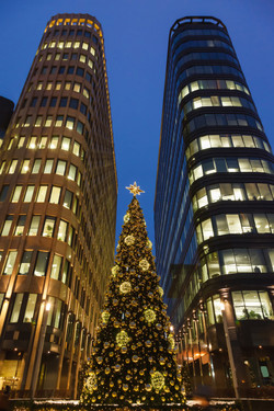 022477506-christmas-tree-and-skyscrapers