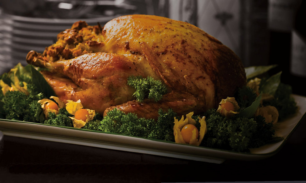 Christmas Turkey Dark.jpg