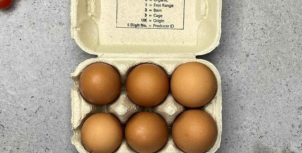 Eggs 6 x Free Range
