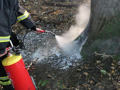 Kleinbrand in Waldstück rasch gelöscht