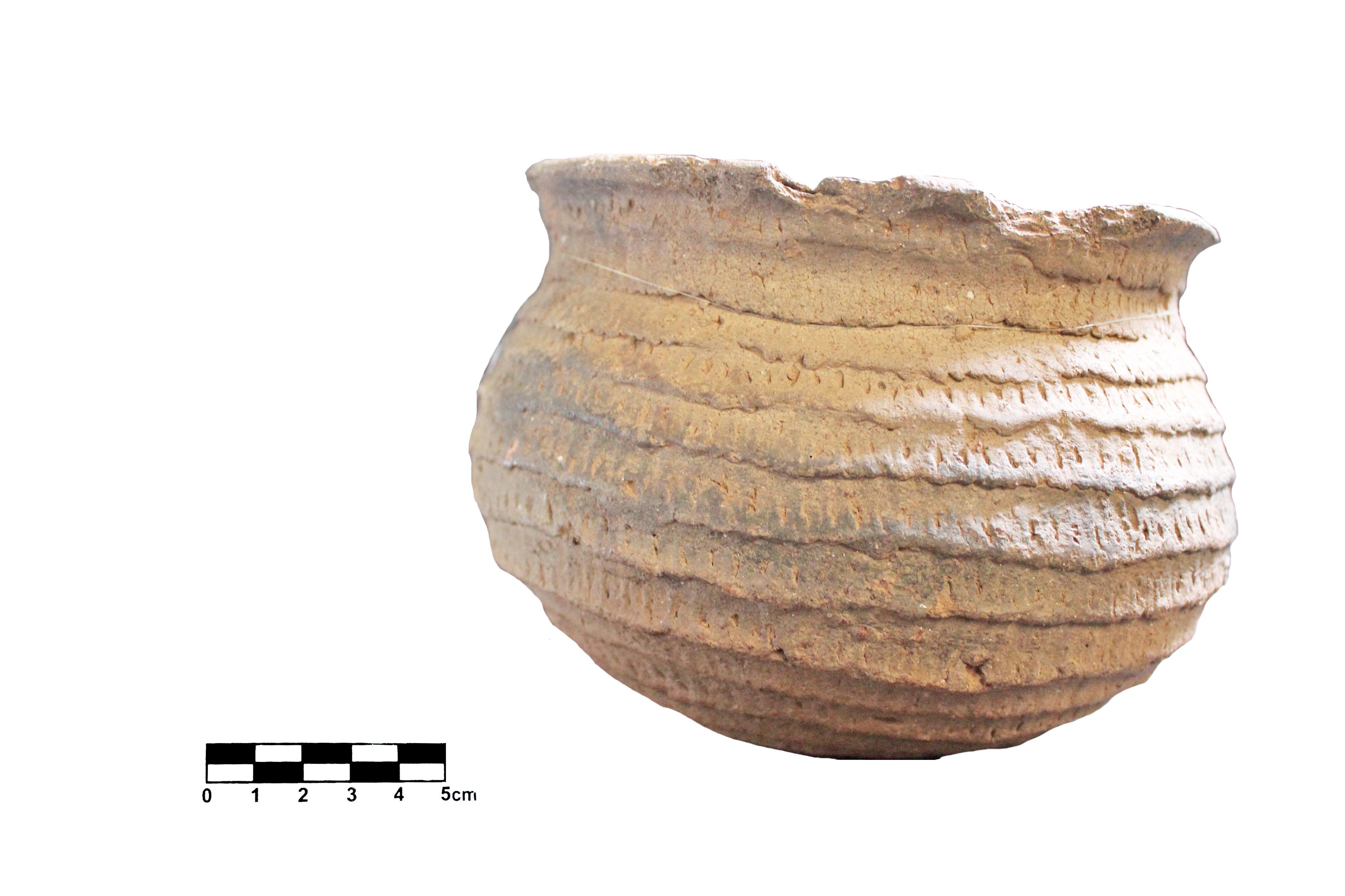Museu Histórico Celso F. Sperança
