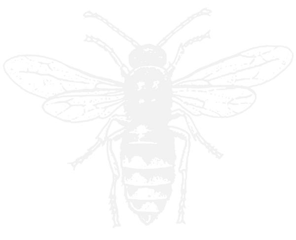 Bee_edited_edited.png