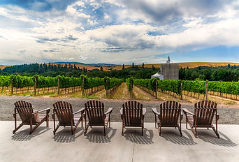 High Res Deck Chair photo at winery.jpg
