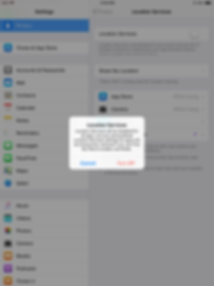 Step-by-step Restricted Access for Children - Apple 6