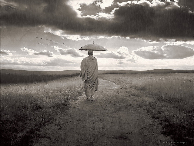 zen-monk-walk-rain-umbrella.jpg
