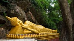 g-buddha-vi
