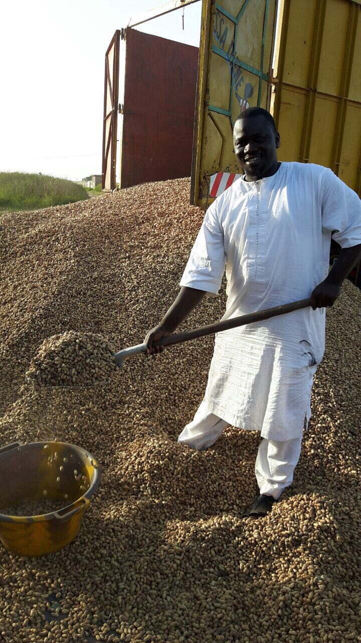 Processing our peanuts from our farm_
