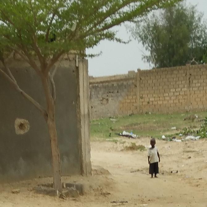 The Senegal Chronicles