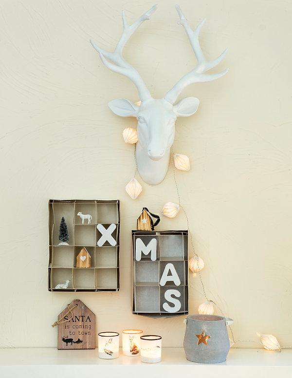 kerst goesnes-1426.jpeg