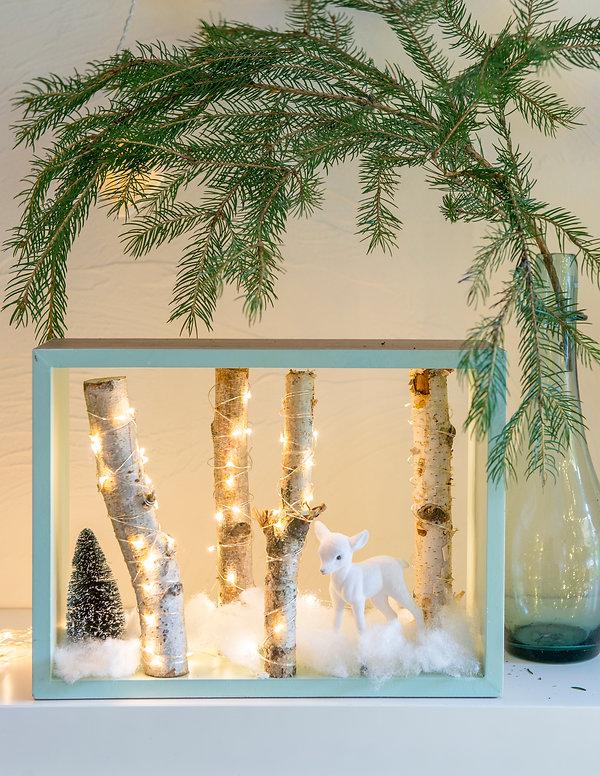 kerst goesnes-1494.jpeg