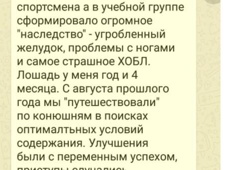 """Отзывы об АК """"Благодать"""", Красноярск"""