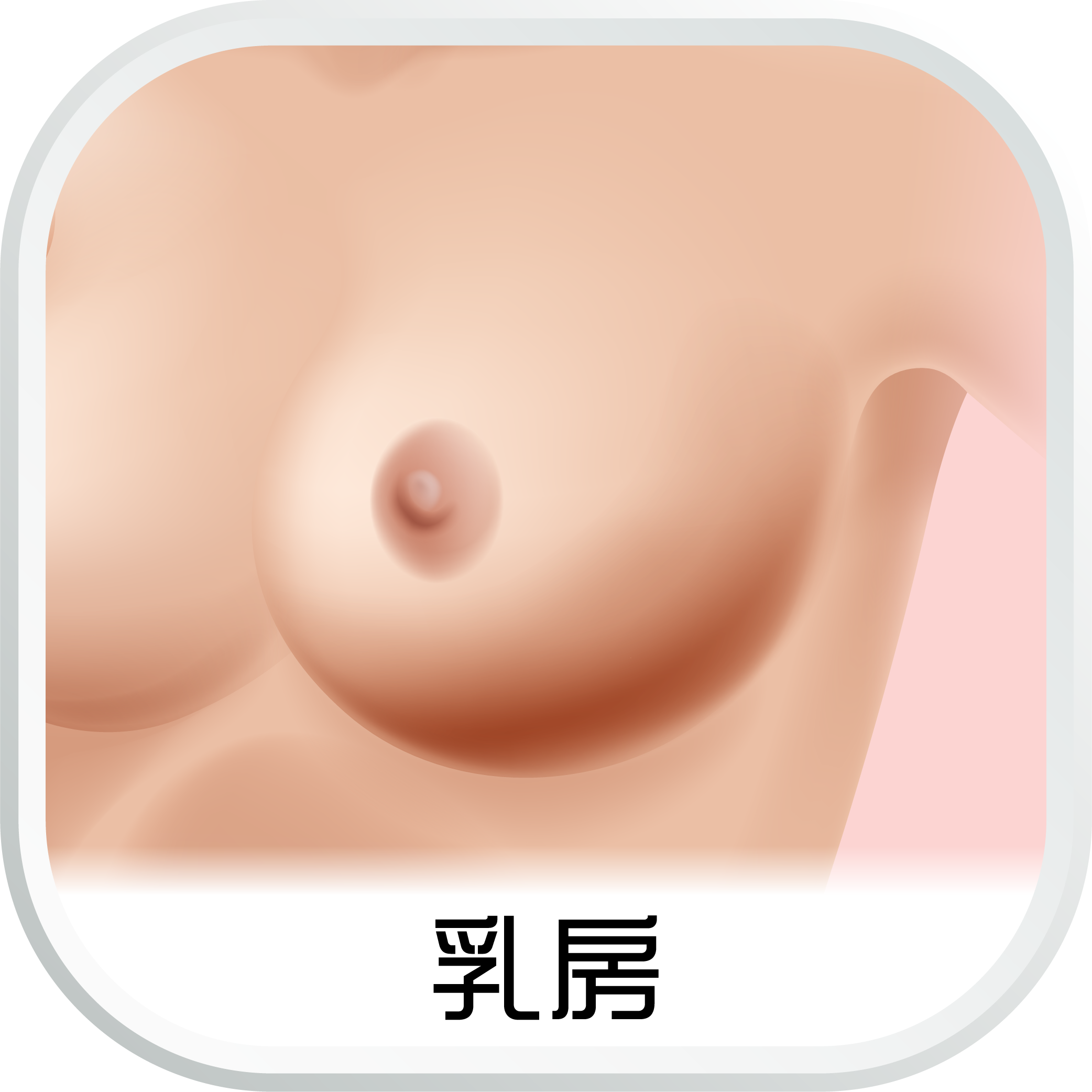 EHC_SubCat_aw_乳房