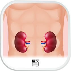 EHC_SubCat_aw_腎