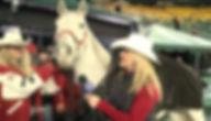 melissa horse.jpg