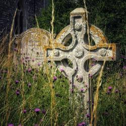 16. All Saints, Horstead