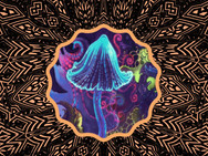 Meeting Your States of Consciousness, Part III: Psychedelics