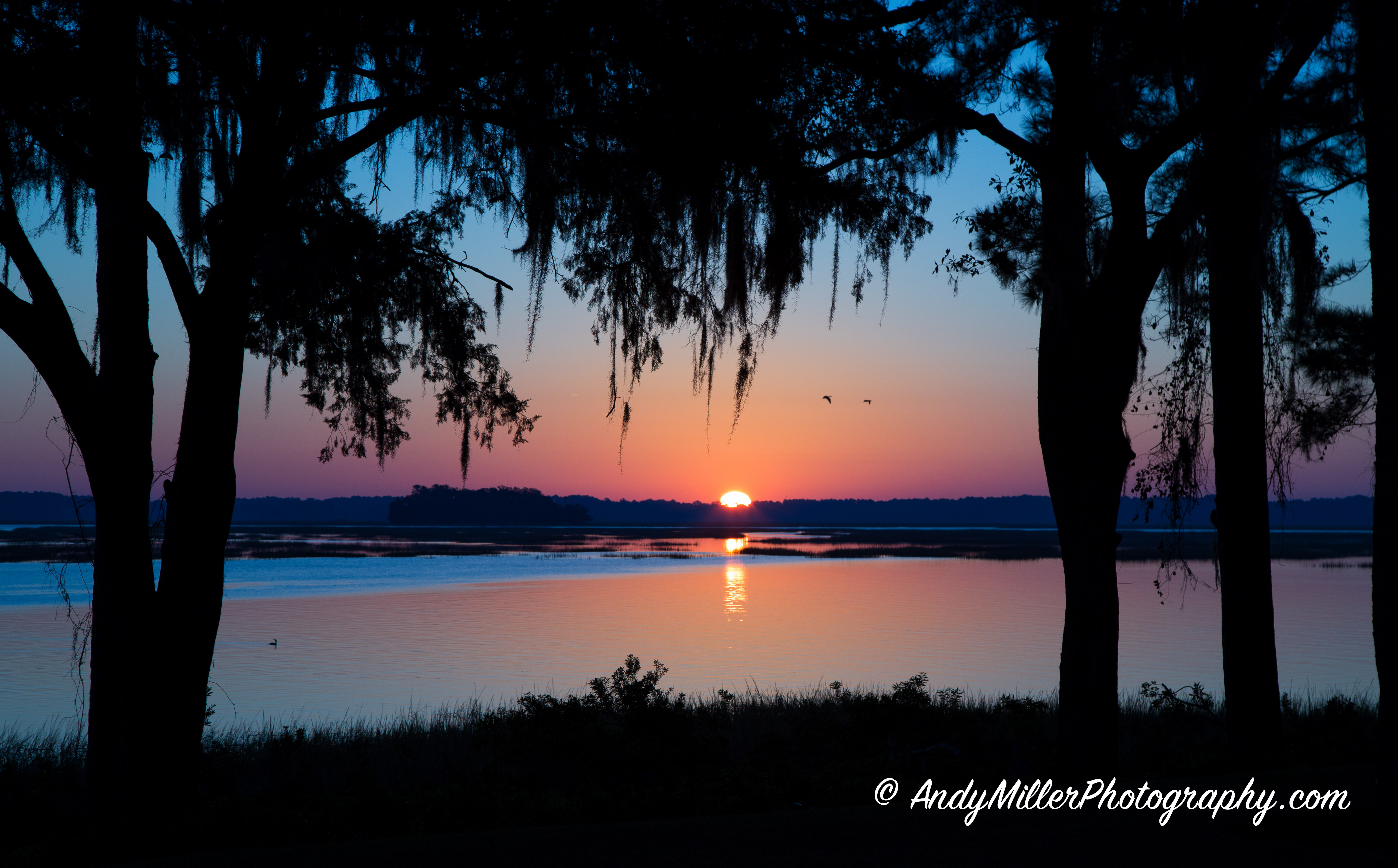 Sunrise at Palmetto Bluff