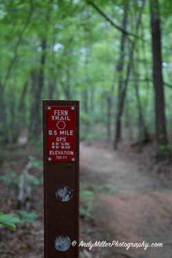 Fern Trail Hiking Marker