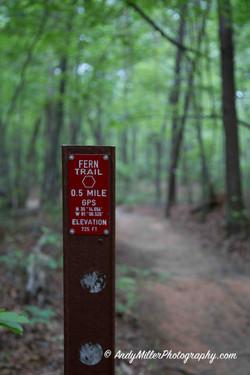 Fern Trail Hiking Marker