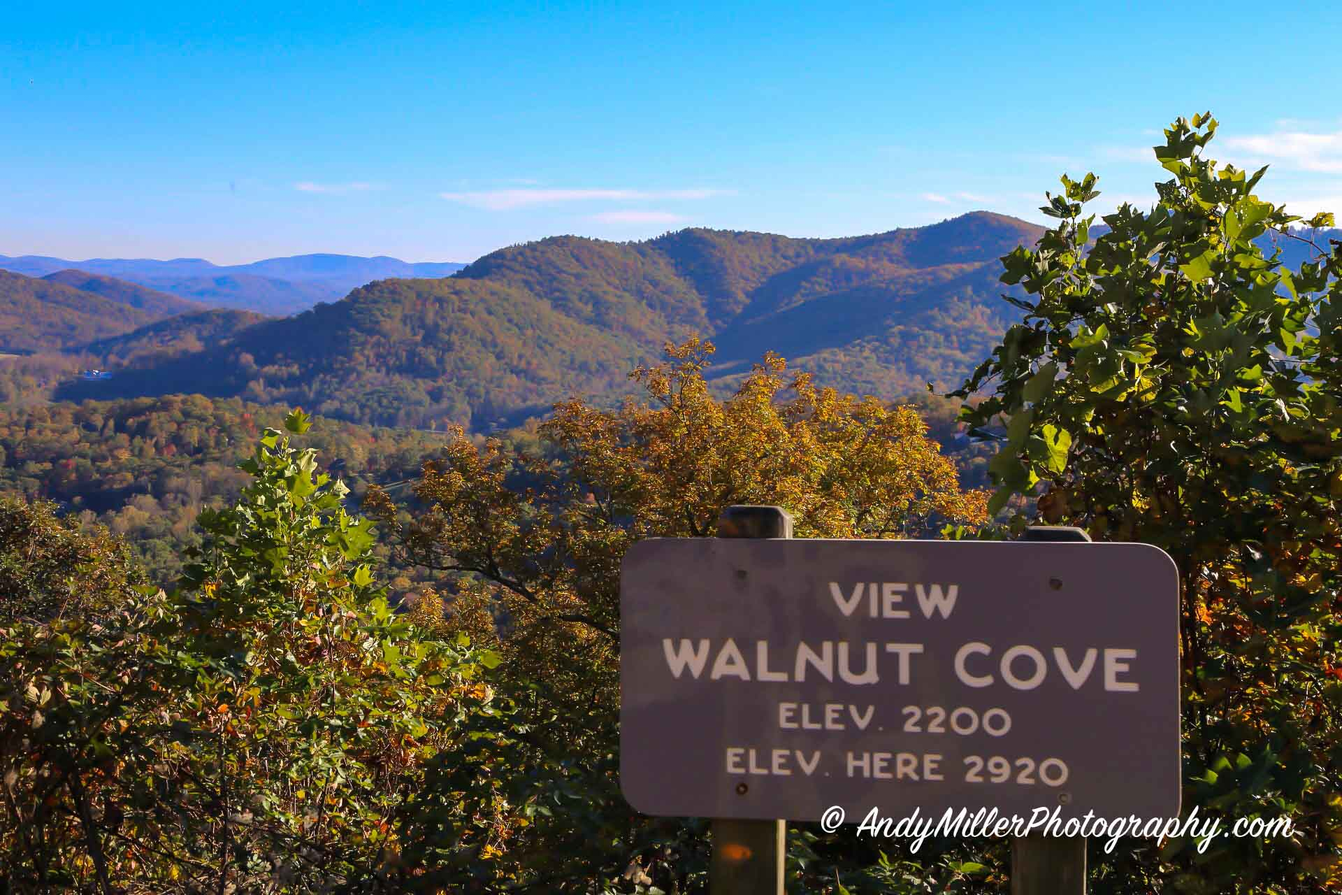 Walnut Cove Overlook Autumn