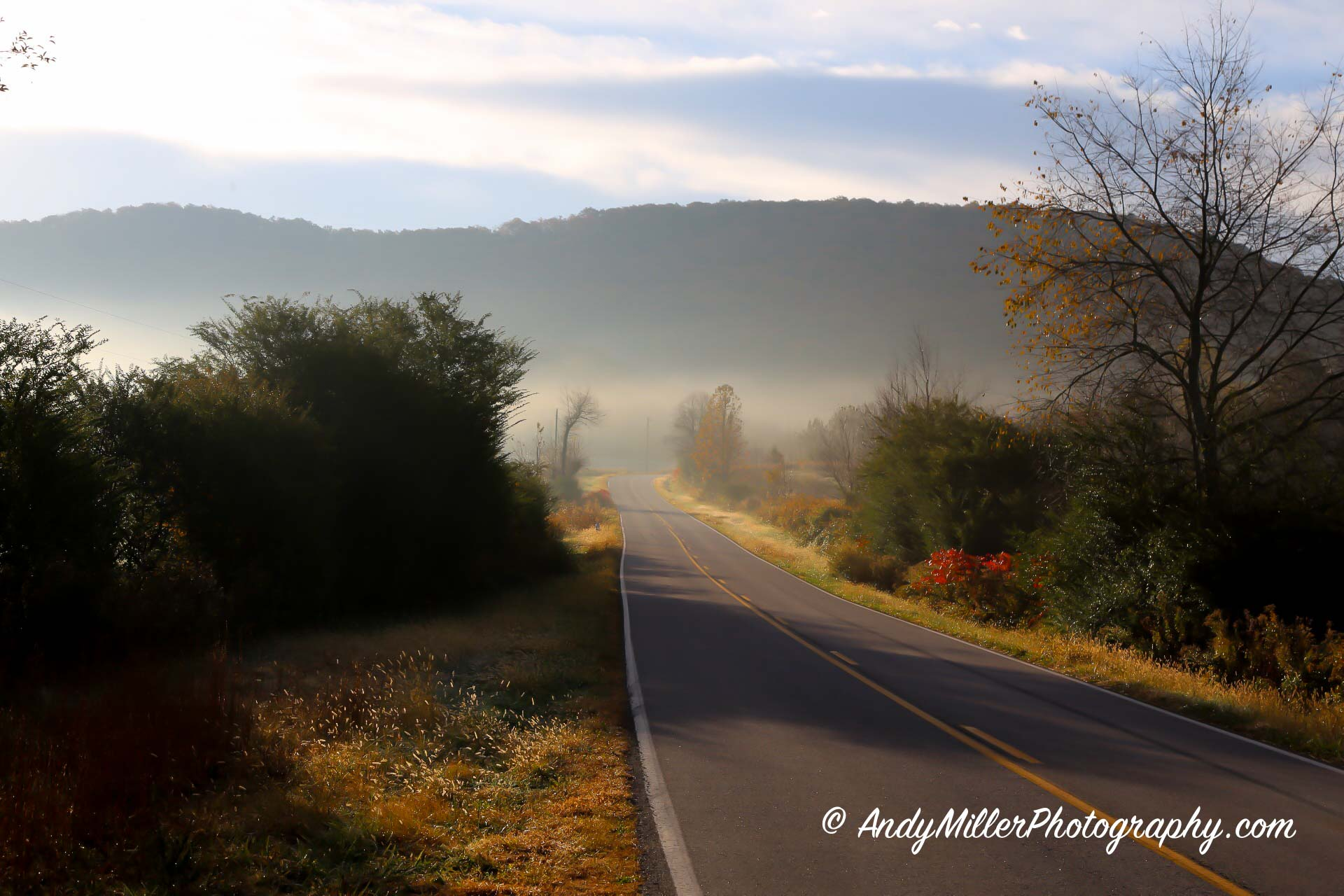 Foggy fall morning on country road