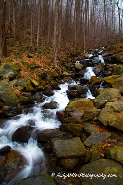 Amicalola Falls rushing creekbed