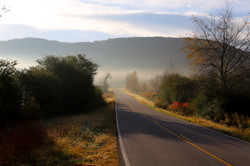 Fog and Fall Colors on Country Road