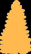 pinheiro 2.png