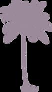palmeira 2.png