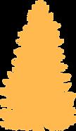 pinheiro 2 (1).png
