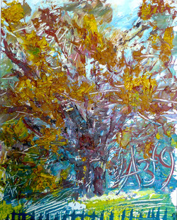 """Solitary oak"" 1979."
